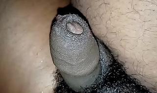देसी सॉथ इंडियन लंड